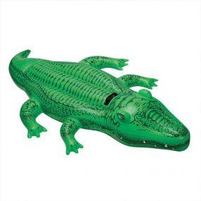 Intex Krokodil